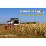 Кукуруза на зерно Технология выращивания
