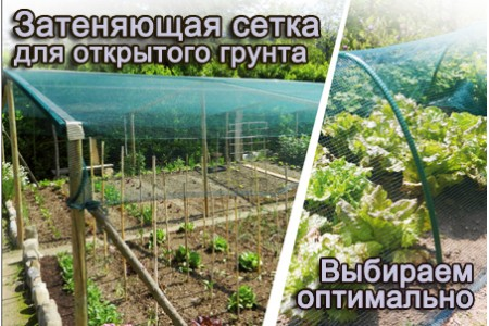 Затеняющая сетка для огорода как правильно выбрать и какую затеняющую сетку для огорода купить для защиты растений открытого грунта
