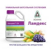Ламдекс Адама