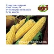 Кукуруза Свит Наггет Agri-Zaaten