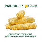 Кукуруза Ракель f1