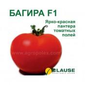 Томат Багира f1 Clause