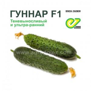 Огурец Гуннар f1