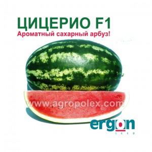 Арбуз Цицерио F1 Ergon