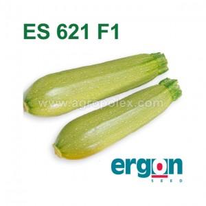 Кабачок ES 621 F1 Ergon