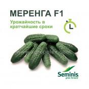 Огурец Меренга f1 Семинис