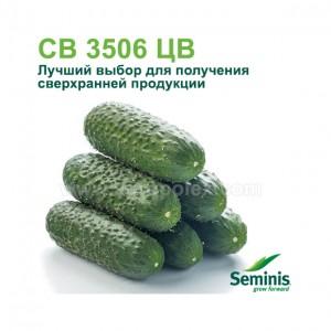 Огурец 3506 F1 Семинис