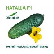Огурец Наташа F1 Семинис