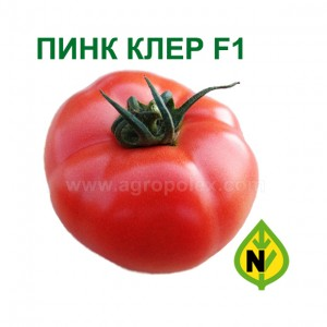 Томат Пинк Клер F1