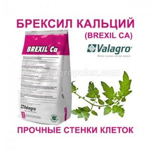 Брексил Кальция Valagro