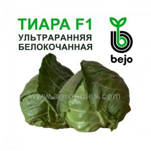 Капуста Тиара F1 Bejo