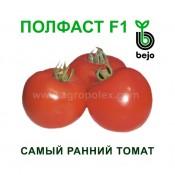 Томат Полфаст F1 Бейо