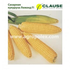 Кукуруза Леженд f1 Clause