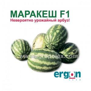 Арбуз Маракеш f1 Ergon