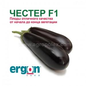 Баклажан Честер f1 Ergon