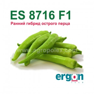 Острый перец ES 8716 F1 Ergon