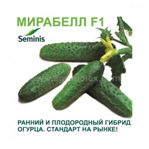 Огурец Мирабелл F1 Семинис
