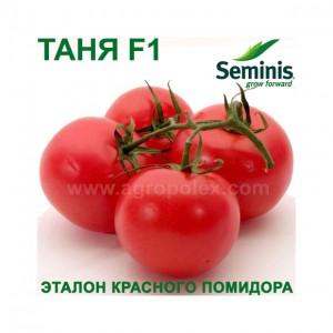 Томат Таня F1 Seminis