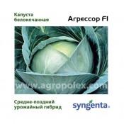 Капуста Агрессор f1 Syngenta